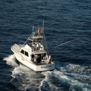 West maui sports fishing marine supply rentals charters for Maui fishing charter